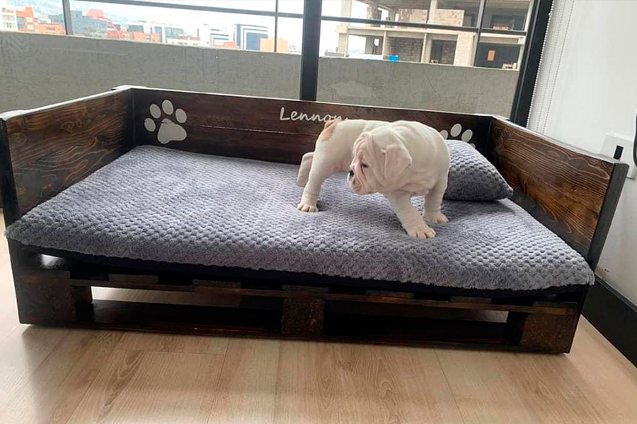 cama-perro2